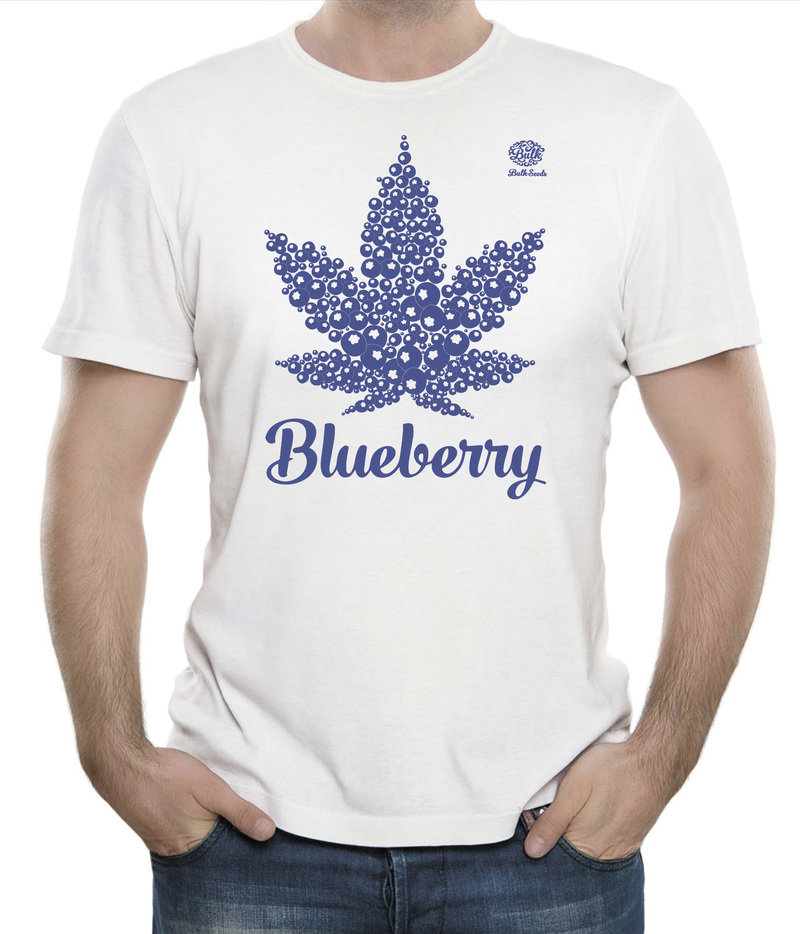 Bulk Seeds Blueberry L