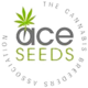 Ace_seed