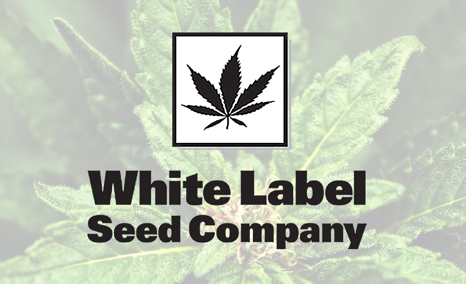 White_label