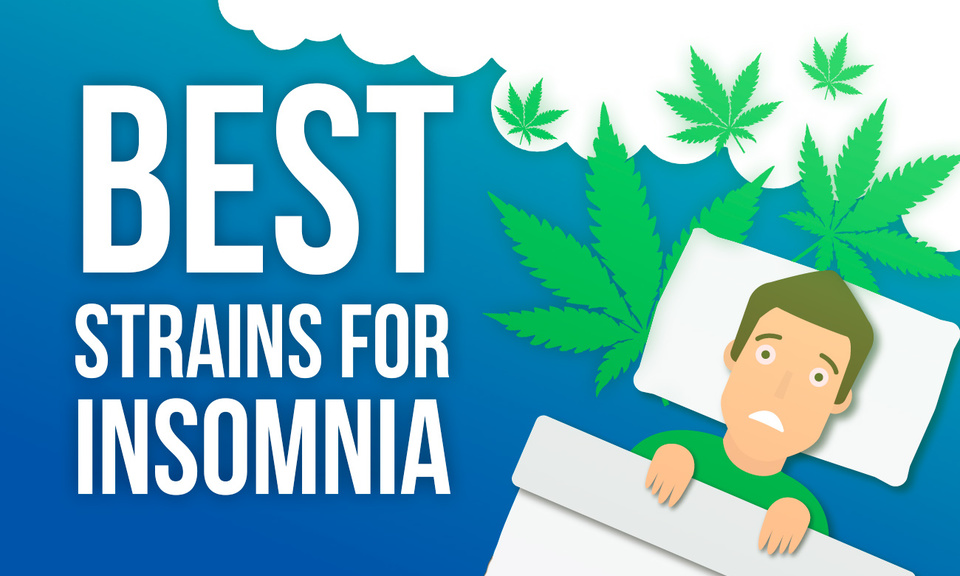 The Best strains for Insomnia