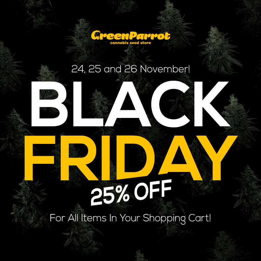 Black Friday in Green Parrot Seeds