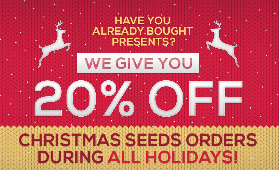 Christmas Sale in green Parrot seeds