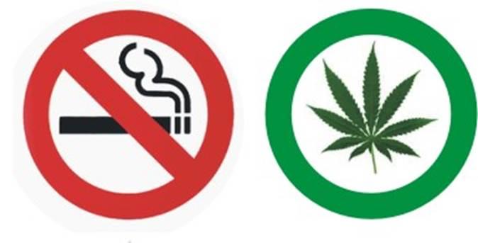 Legalidad de la Marihuana