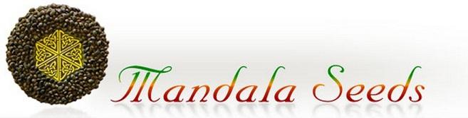 Mandala Seeds